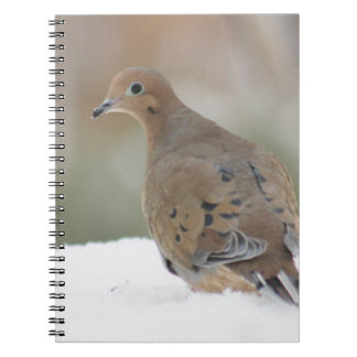 Mourning dove photography spiral notebook