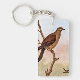Mourning Dove Vintage Illustration Keychain
