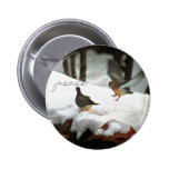 Mourning Doves Photo Pins