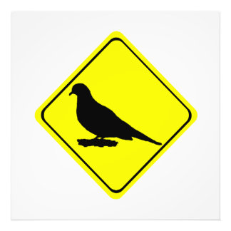 Mourning Love or Turtle Dove Caution Crossing Sign Photo Art