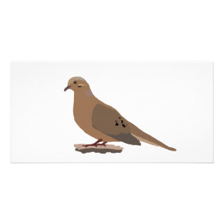 Mourning, Love or Turtle Dove Digitally Drawn Bird Card
