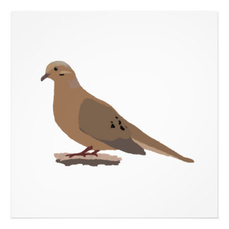 Mourning, Love or Turtle Dove Digitally Drawn Bird Photograph