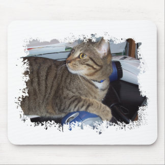 Mouse addicted cat mouse pad