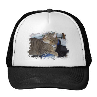 Mouse addicted cat trucker hat