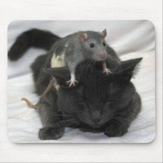 Mouse and cat mouse pad