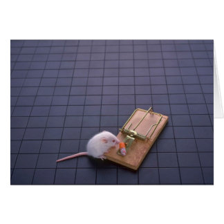 Mouse and trap card