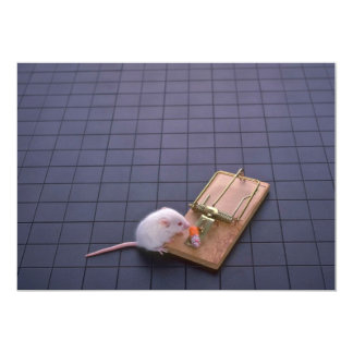 Mouse and trap 5x7 paper invitation card