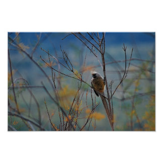 Mouse bird in the tree print
