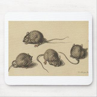 mouse-clipart-2 alfombrilla de ratones
