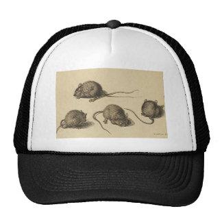 mouse-clipart-2 gorros bordados