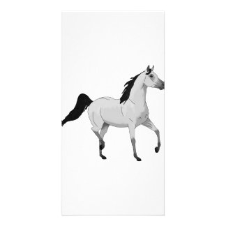 Mouse Grey Arabian Horse Trotting and Prancing Card