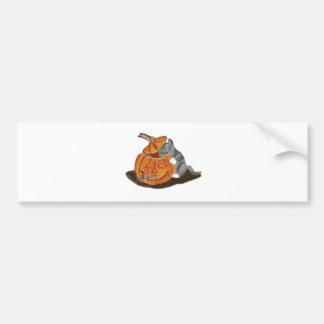 Mouse Hide and Seek in a Carved Pumpkin Bumper Sticker