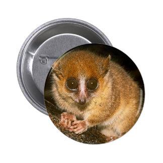 mouse-lemur pinback button