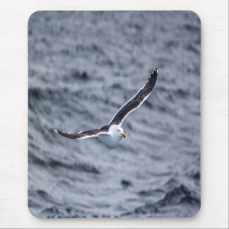 Mouse mat - Gull #5 Mouse Pad