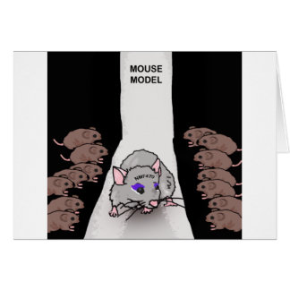 Mouse Model Card