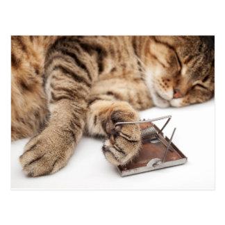 Mouse nightmare postcard