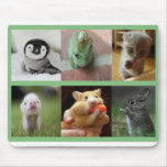 Mouse Pad-Adorable Animals