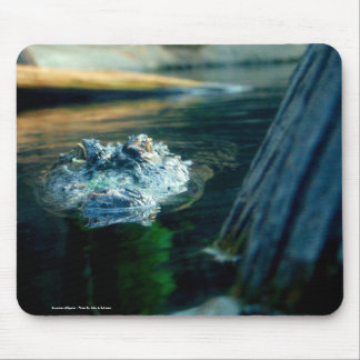Mouse Pad American Alligator - Photo By: John A...
