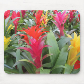 Mouse Pad - Bromeliad Forest