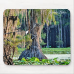 Mouse Pad - Cypress001