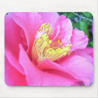 Mouse Pad - Dark Pink Camellia