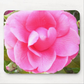 Mouse Pad - Dark Pink Camellia 1
