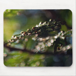 Mouse Pad featuring abstract Cedar branch photo