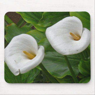 Mouse Pad Flower - Gladiolos