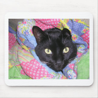 Mouse Pad: Funny Cat wrapped in Blankets Mouse Pad
