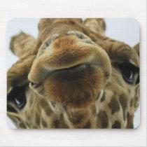 Mouse PAD giraffe kiss