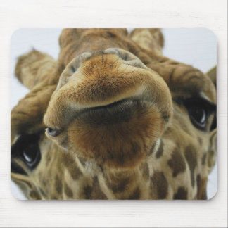 Mouse PAD giraffe kiss