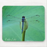 Mouse Pad - Large Dragonfly