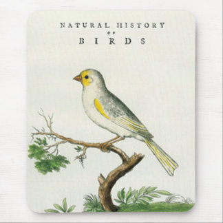 Mouse Pad - Natural History of the Birds