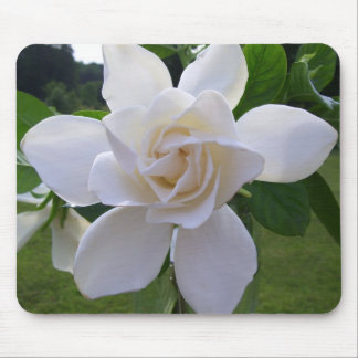 Mouse Pad - Naturally Gorgeous Gardenia