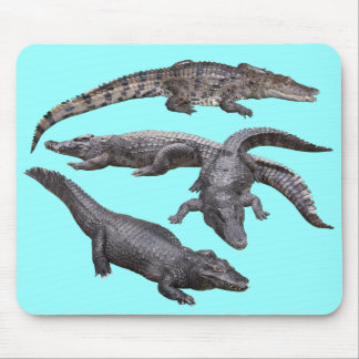 Mouse pad of alligator, No.04