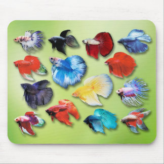 Mouse pad of betta