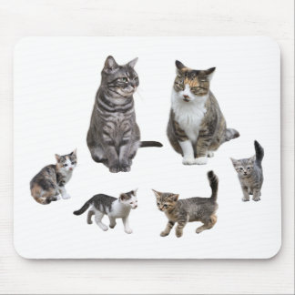 Mouse pad of cat and kitten, No.01