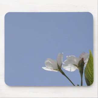 Mouse pad of cherry tree bloom