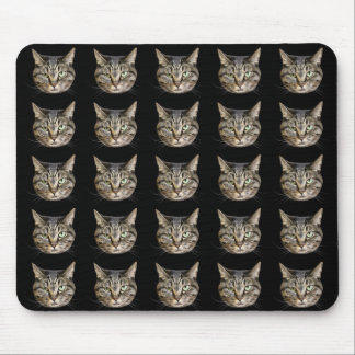 Mouse pad of face of cat, No.02