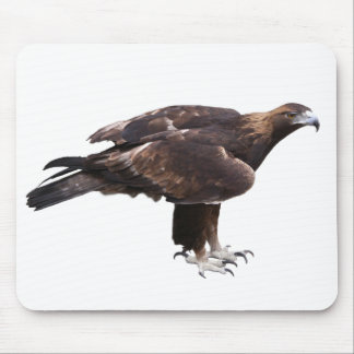 Mouse pad of golden eagle, No.01