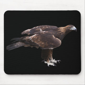 Mouse pad of golden eagle, No.02