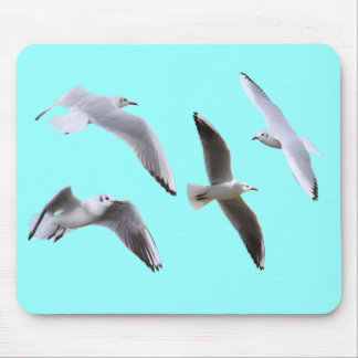 Mouse pad of gull, No.03
