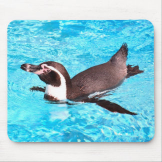Mouse pad of Humboldt penguin, No.01