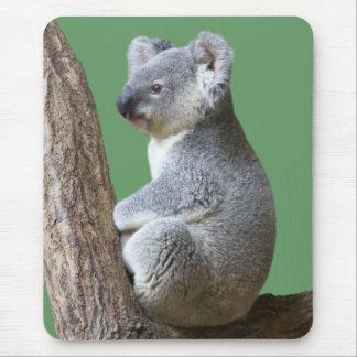 Mouse pad of koala, No.03-4