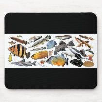 Mouse pad of large-sized tropical fish