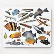 Mouse pad of large-sized tropical fish 2-2
