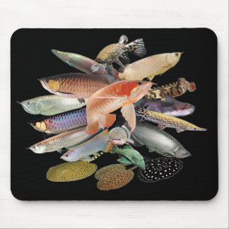 Mouse pad of large-sized tropical fish, No.06