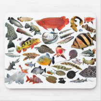 Mouse pad of large-sized tropical fish, No 3