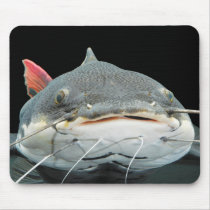 Mouse pad of lead tail cat fish