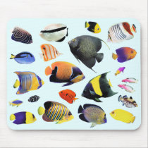 Mouse pad of seawater fish of tropical region, No.